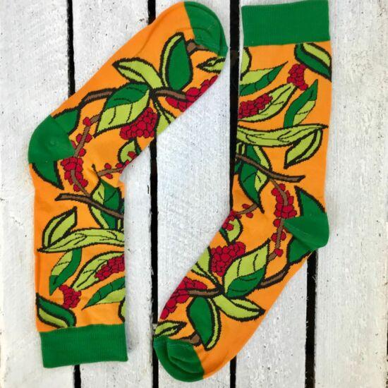 Cophi CASCARA ORANGE barista zokni - női (36-41)