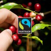 Gourmesso Etiopia Blend Forte Nespresso kompatibilis kávékapszula, 10